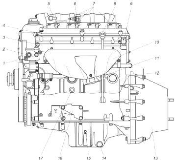 евая сторона двигателя ЗМЗ-405 автомобилей ГАЗ-3302 Газель Бизнес, ГАЗ-2752 Соболь